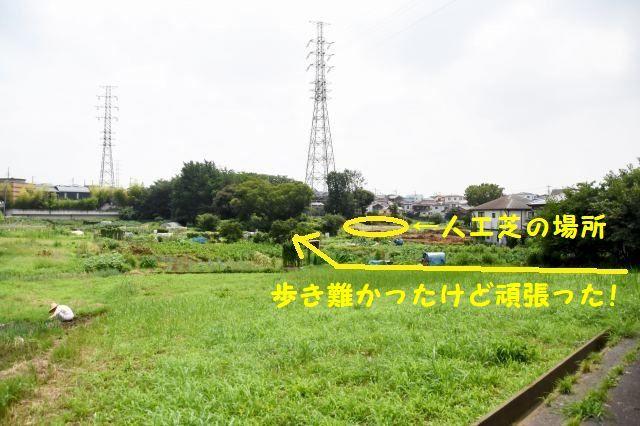 JPG_5265.jpg